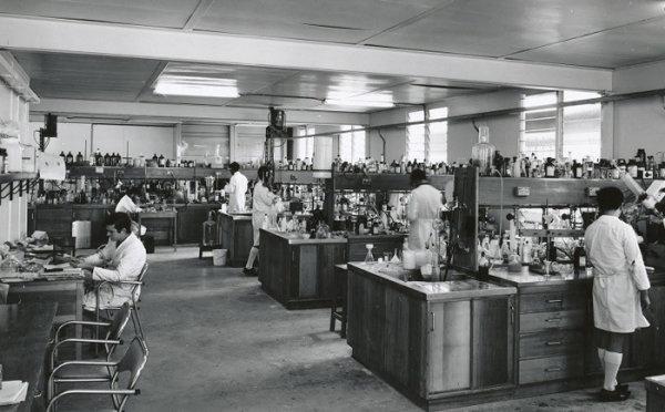 Лаборатория №1