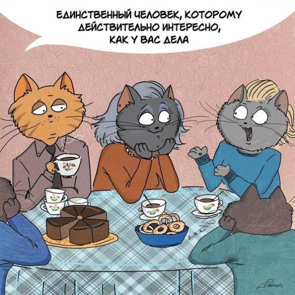 mamy_creu-ru_05